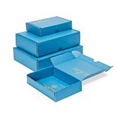 Caja de envío ESD Coretronic gr_h0