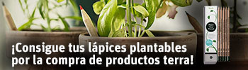 Regalo lápices plantables